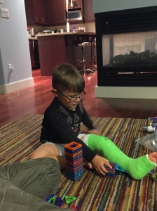 The lion sporting his leg cast.